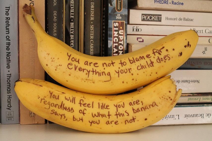 bananas blame 2 theuglyvolvo